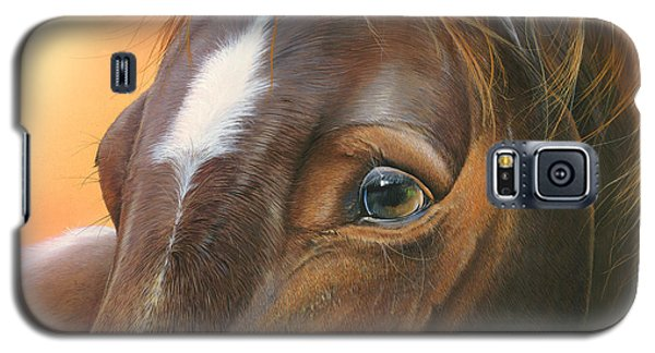 Galaxy S5 Case featuring the painting Pure Grace by Mike Brown