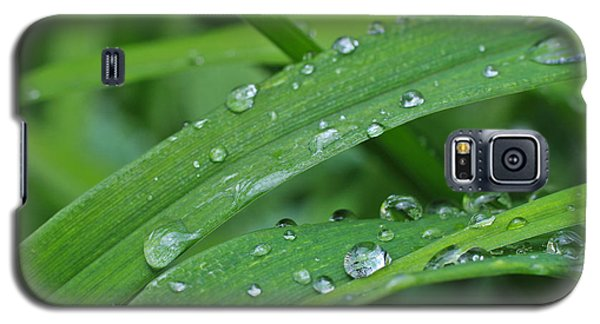 Pure Green Galaxy S5 Case by Julie Andel