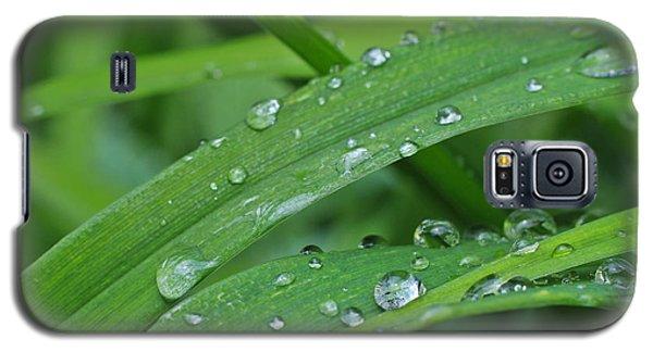 Pure Green Galaxy S5 Case