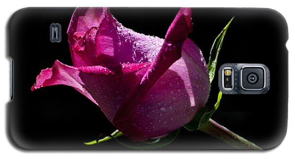 Galaxy S5 Case featuring the photograph Pure Pink by Doug Norkum