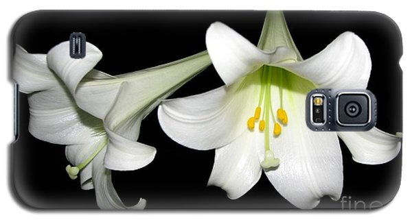 Galaxy S5 Case featuring the photograph Pure White Easter Lilies by Rose Santuci-Sofranko