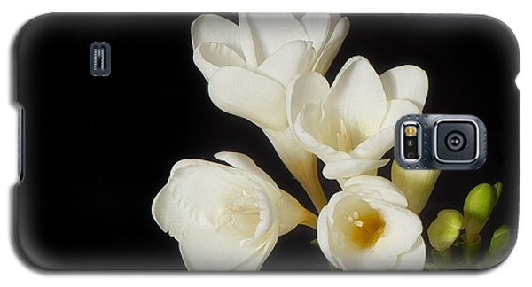 Galaxy S5 Case featuring the photograph Purity   A White On Black Floral Study by Lisa Knechtel