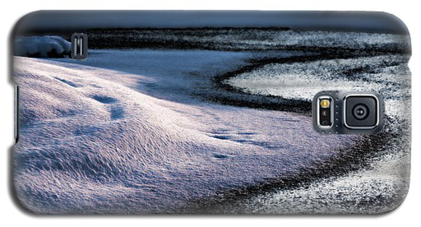Purity Galaxy S5 Case