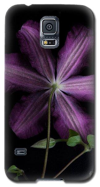 Purple  Galaxy S5 Case by Alana Ranney
