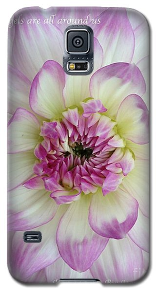Galaxy S5 Case featuring the photograph Purple And Cream Dahlia by Jeannie Rhode