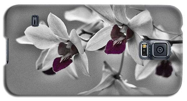 Purple And Pale Green Orchids - Black And White Galaxy S5 Case