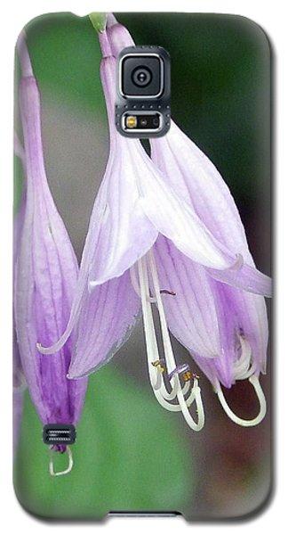 Purple And White Fuchsia Galaxy S5 Case