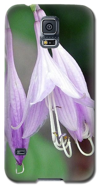 Purple And White Fuchsia Galaxy S5 Case