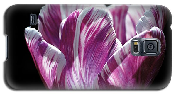 Purple And White Marbled Tulip Galaxy S5 Case