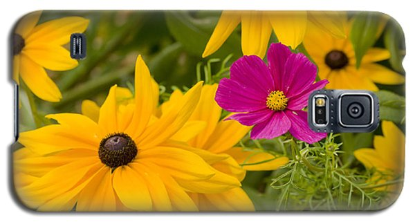 Purple And Yellow Flowers Galaxy S5 Case