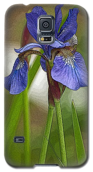 Purple Bearded Iris Watercolor With Pen Galaxy S5 Case by Brenda Jacobs