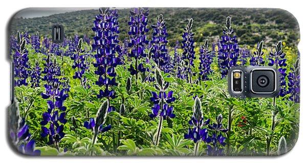 Purple Blossom Galaxy S5 Case