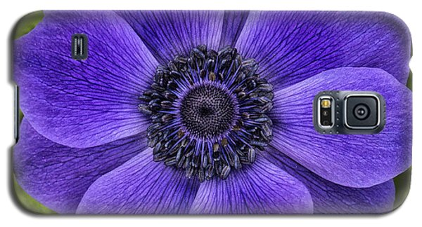 Purple Blue Anemone Galaxy S5 Case