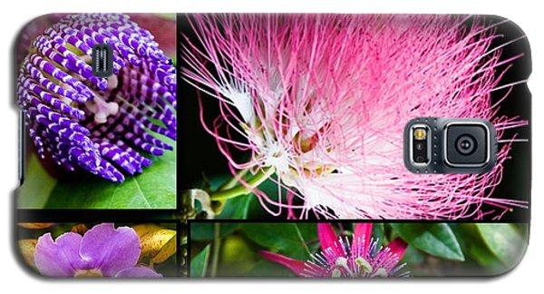 Purple Bouquet Galaxy S5 Case by Melinda Ledsome