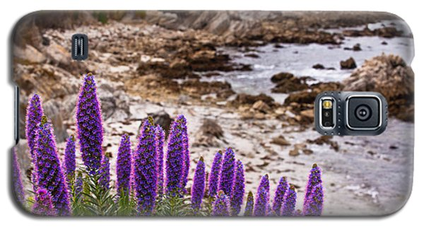 Purple California Coastline Galaxy S5 Case