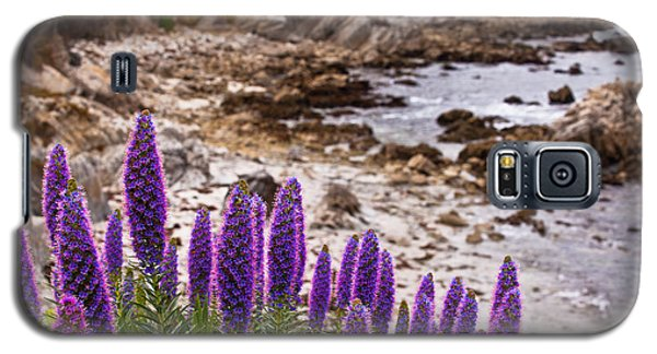 Purple California Coastline Galaxy S5 Case