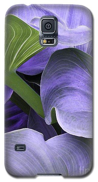 Purple Calla Lily Bush Galaxy S5 Case