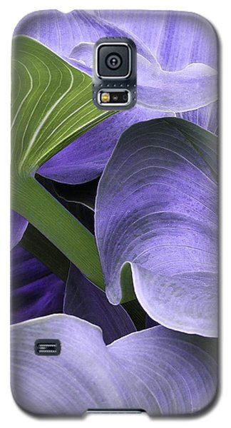 Purple Calla Lily Bush Galaxy S5 Case