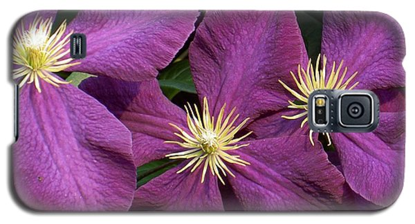 Purple Clematis Galaxy S5 Case