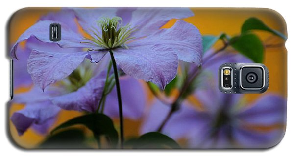 Purple Clematis Evening Galaxy S5 Case
