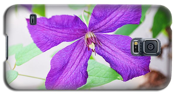 Purple Climbing Vine Galaxy S5 Case