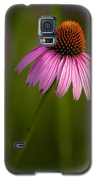 Purple Cone Flower Portrait Galaxy S5 Case by  Onyonet  Photo Studios