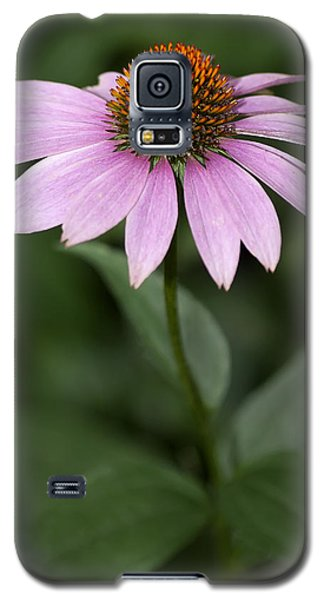 Purple Cone Flower Galaxy S5 Case