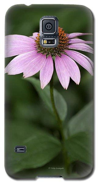 Purple Cone Flower Galaxy S5 Case