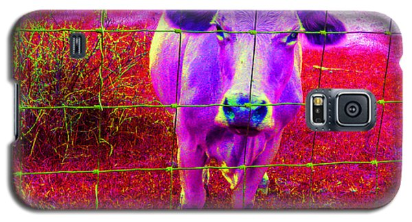 Galaxy S5 Case featuring the photograph Purple Cow by Patricia Januszkiewicz