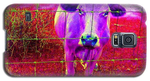 Purple Cow Galaxy S5 Case by Patricia Januszkiewicz