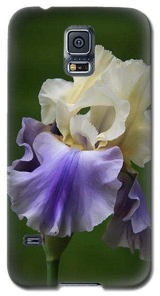Purple Cream Bearded Iris Galaxy S5 Case by Patti Deters