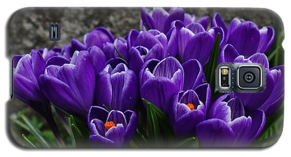 Purple Crocus Galaxy S5 Case