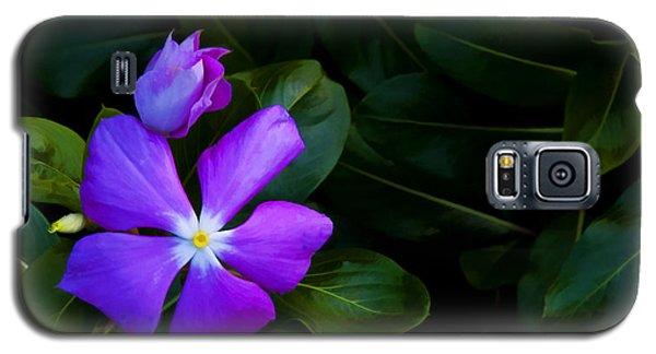 Purple Galaxy S5 Case by Don Durfee