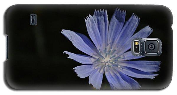 Purple Emerging Galaxy S5 Case