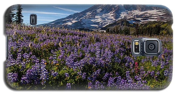 Purple Fields Forever And Ever Galaxy S5 Case