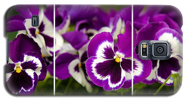 Purple Floral Galaxy S5 Case