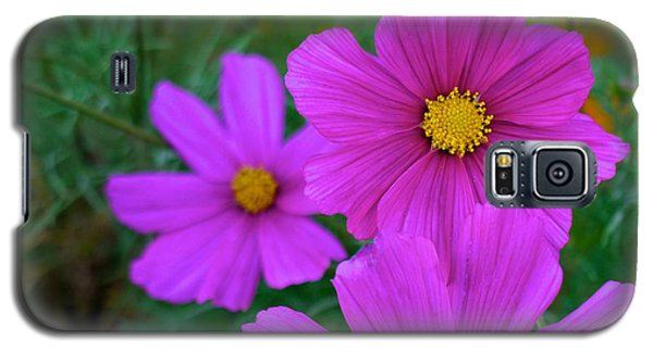 Galaxy S5 Case featuring the photograph Purple Flower by Alex King