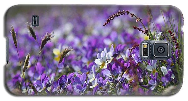 Purple Flower Bed Galaxy S5 Case