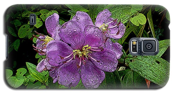 Galaxy S5 Case featuring the photograph Purple Flower by Sergey Lukashin
