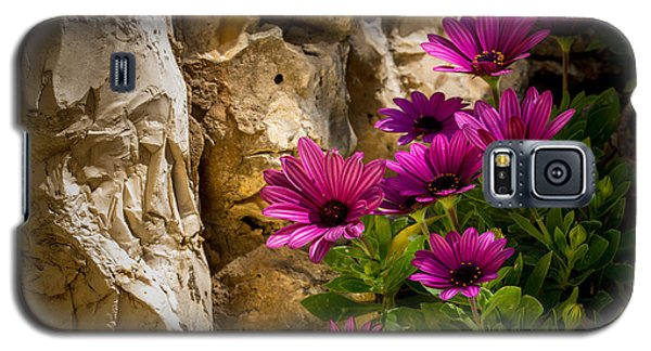 Purple Flowers And Rocks Galaxy S5 Case