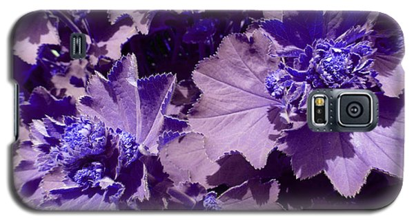 Galaxy S5 Case featuring the photograph Purple Flowers by Laurie Tsemak