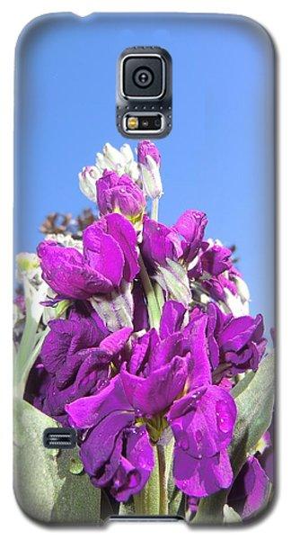 Purple Glow 2 Galaxy S5 Case