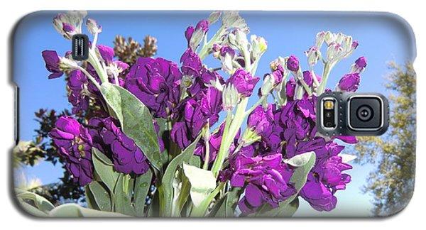 Purple Glow Galaxy S5 Case