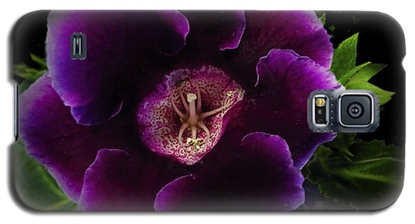 Purple Gloxinia   Galaxy S5 Case by Judy  Johnson