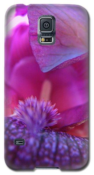 Galaxy S5 Case featuring the photograph Purple Haze by Brooks Garten Hauschild