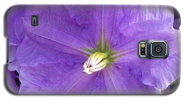 Purple Heart Galaxy S5 Case by Debi Singer