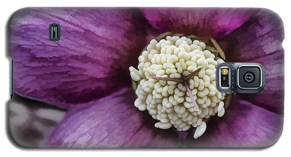 Purple Hellebore Galaxy S5 Case