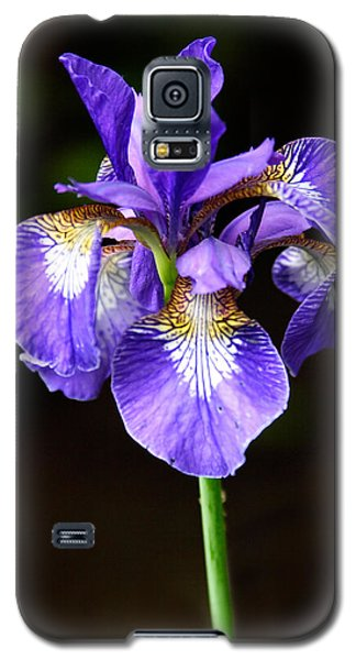 Purple Iris Galaxy S5 Case by Adam Romanowicz