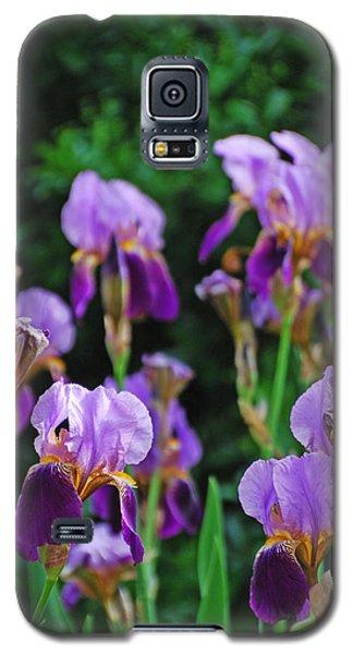 Purple Iris Bliss Galaxy S5 Case