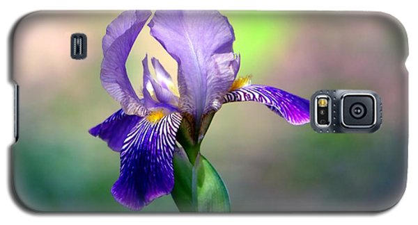 Purple Iris Galaxy S5 Case by Deena Stoddard